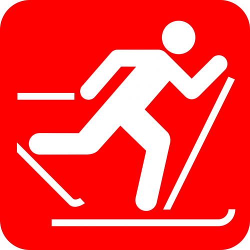 Логотип организации Лыжные гонки севера Нижегородской области